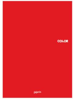 Color A4 PP Kapak Tel Dikişli Defterler